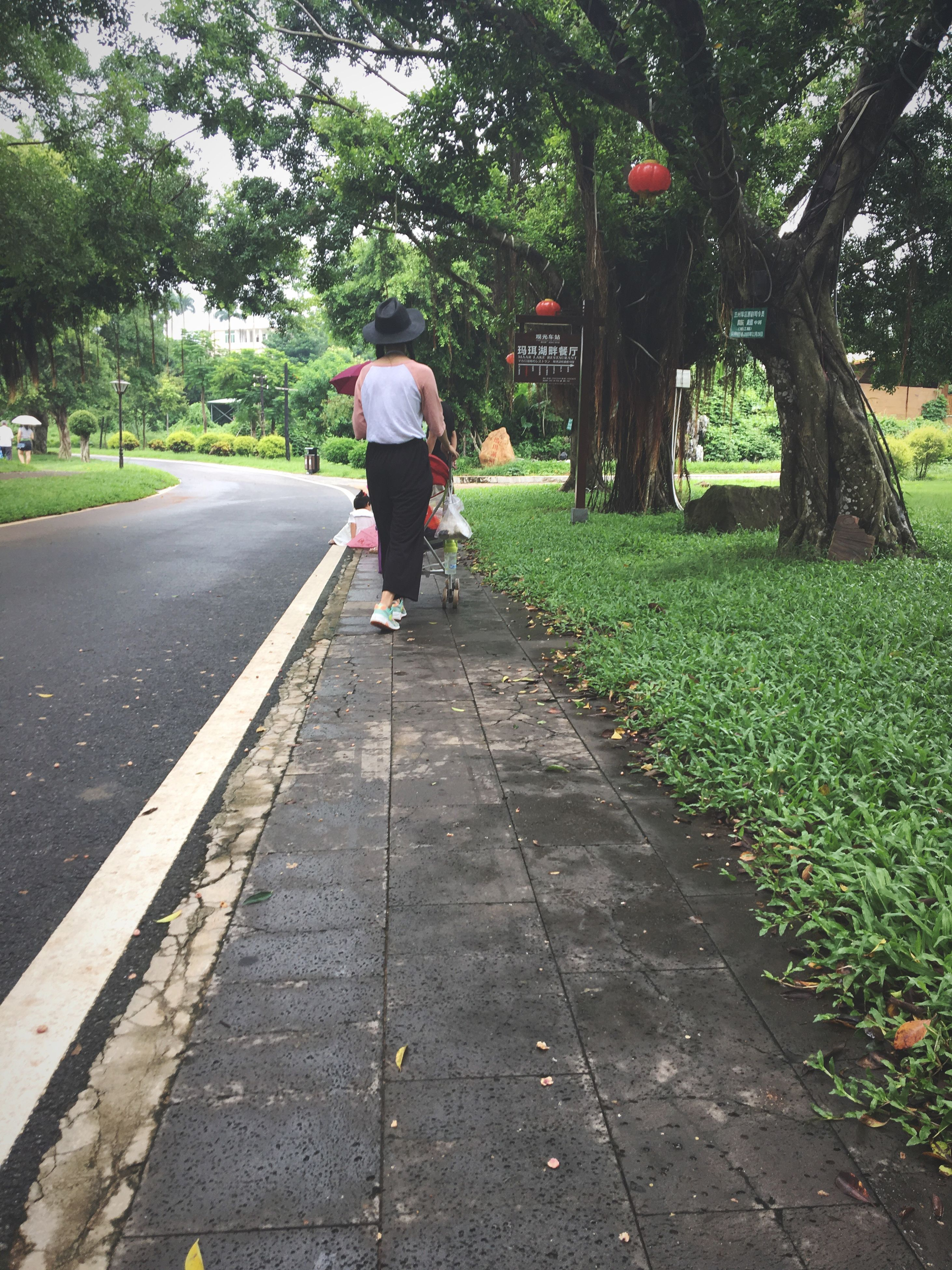 rear view, full length, tree, transportation, grass, road, lifestyles, the way forward, green color, casual clothing, growth, day, diminishing perspective, park, outdoors, footpath, vanishing point, country road