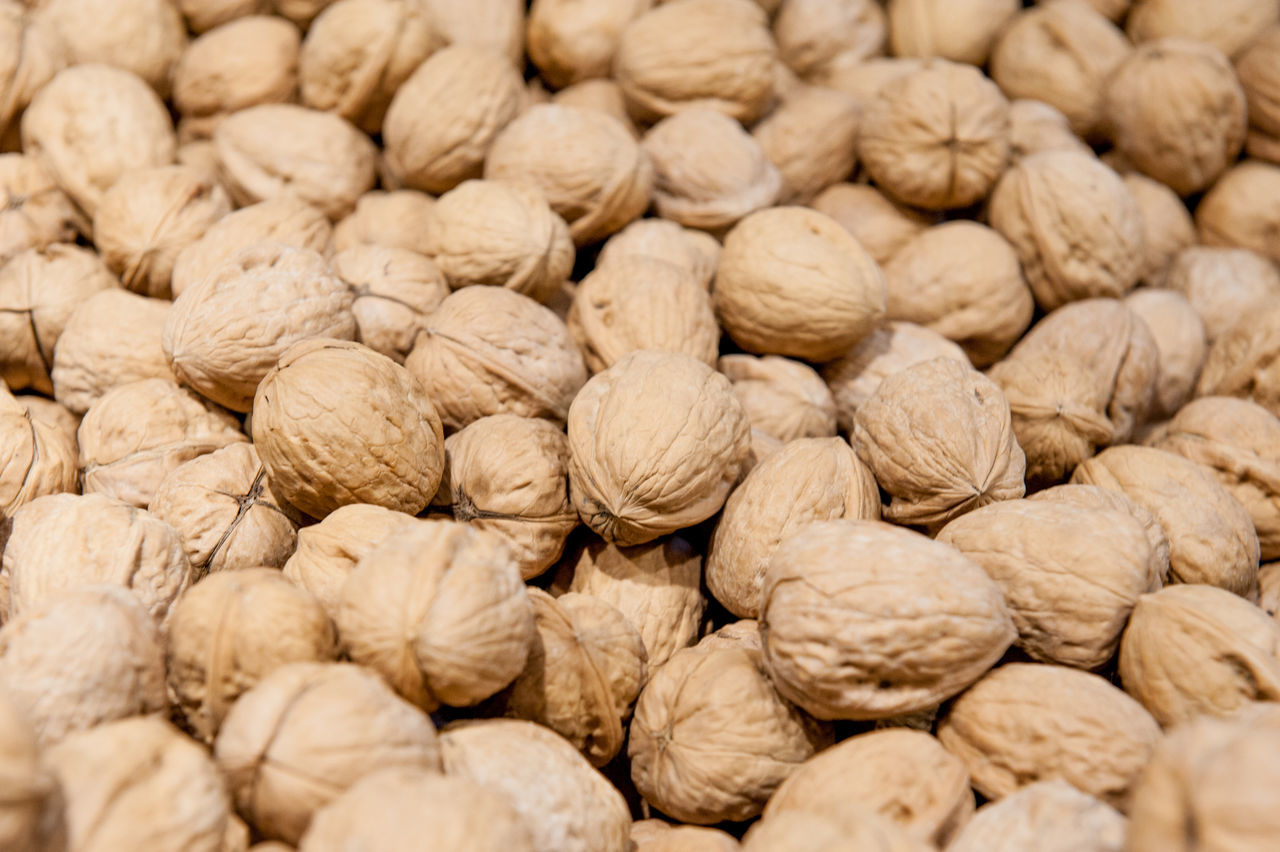 Detail of heap of walnuts in market Abundance Backgrounds Close-up Day Food Food And Drink Freshness Full Frame Healthy Eating Indoors  Large Group Of Objects Market Nature No People Nut Nut - Food Nutshell Raw Shop Stall Still Life Walnut Walnuts