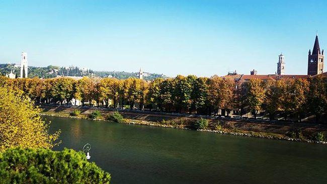 Verona Mylove Quantomimanchi Seibellissima Casiná Fall Trees River Sunnyday 💕🍀🌞