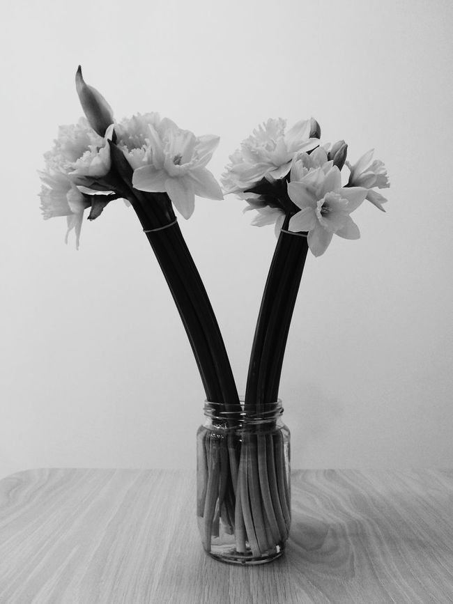 Flower Bunch Of Flowers Bouquet Beauty Flower Head Black & White Indoors  Plant