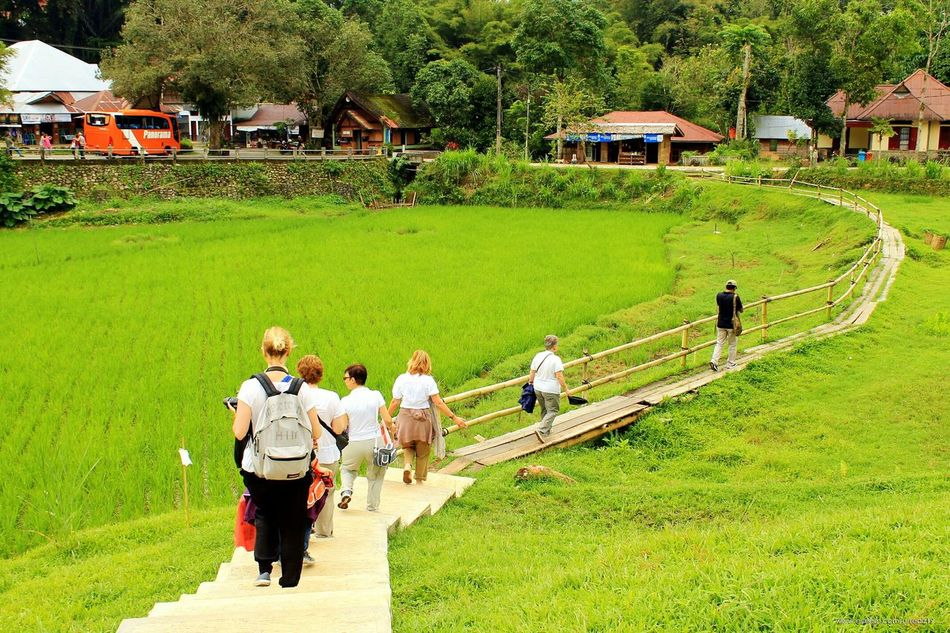 Tourist Green Green Grass Nature Green Hill Full Length Green Color Outdoors People Women Senior Adult Togetherness Archival Kete Kesu Rantepao Toraja Utara Toraja Travel Destinations INDONESIA Flying High