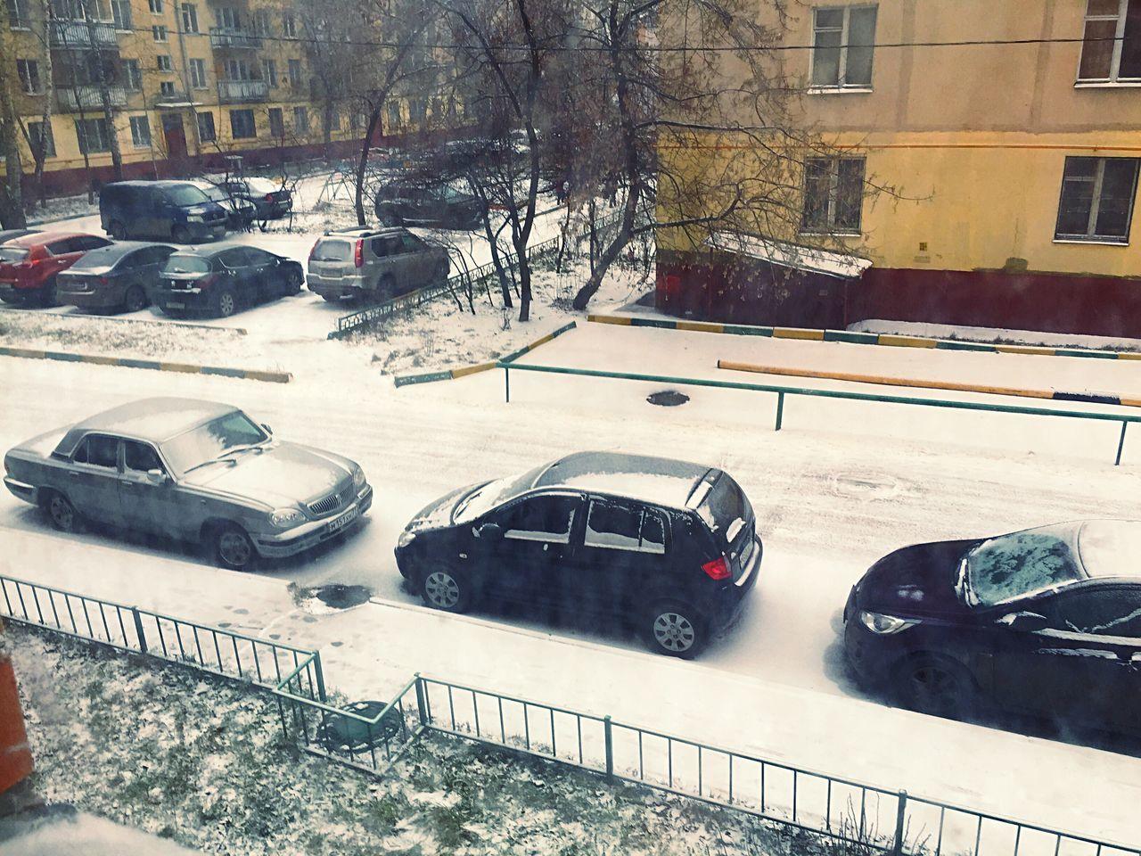 Так и не дождались снега😕❄ а новый год уже на подходе. снег ждем