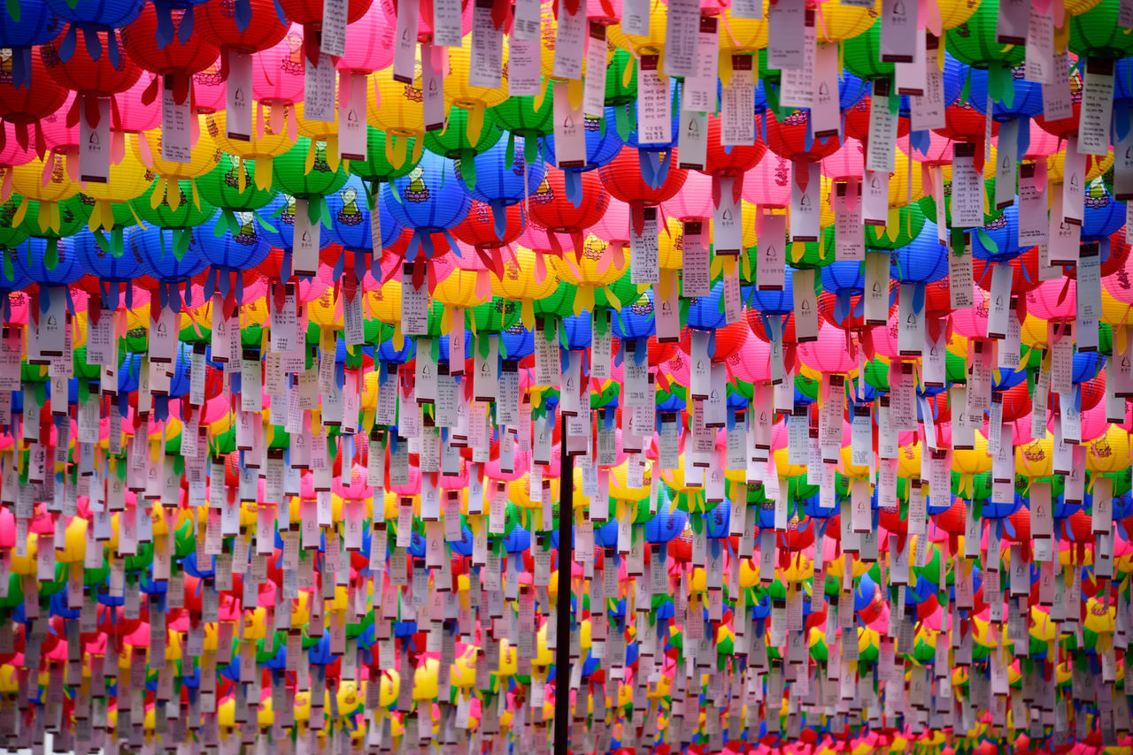 Abundance Buddha's Birthday Choice Close-up Day Hanging Large Group Of Objects Lotus Lantern Festival Multi Colored No People Seoul, Korea Variation Wishes