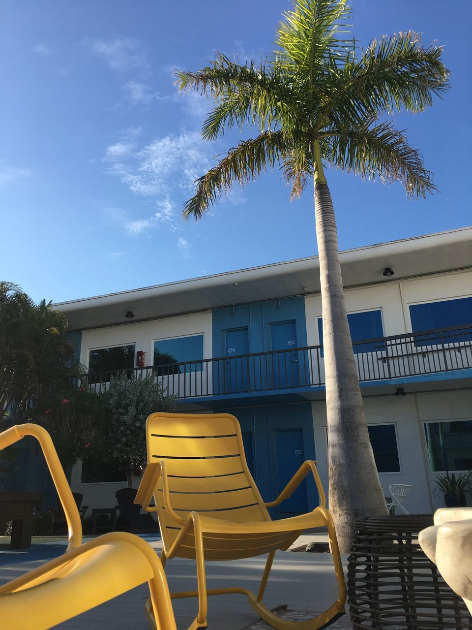 palm tree, tree, architecture, built structure, yellow, day, building exterior, chair, outdoors, sky, no people, nature