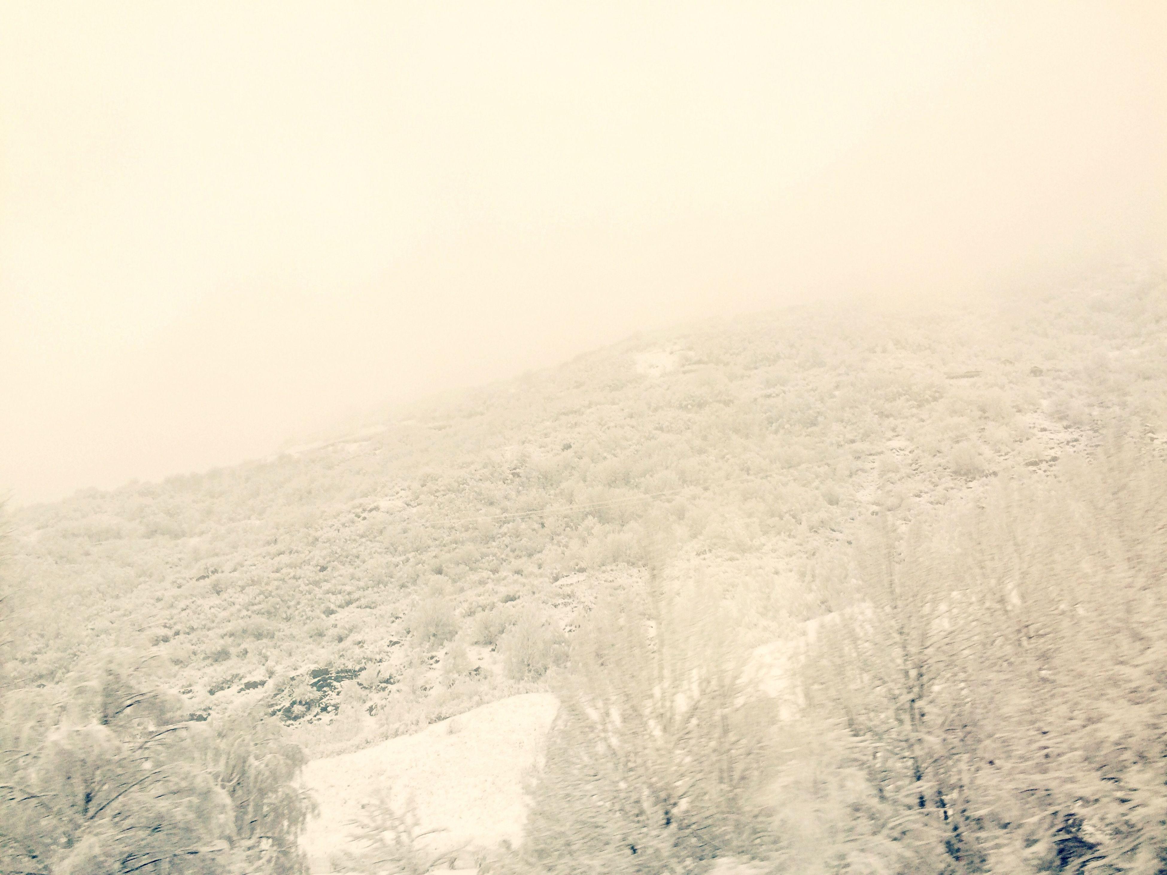 snow, winter, cold temperature, tranquil scene, tranquility, weather, landscape, fog, scenics, mountain, beauty in nature, copy space, nature, non-urban scene, foggy, season, covering, remote, idyllic