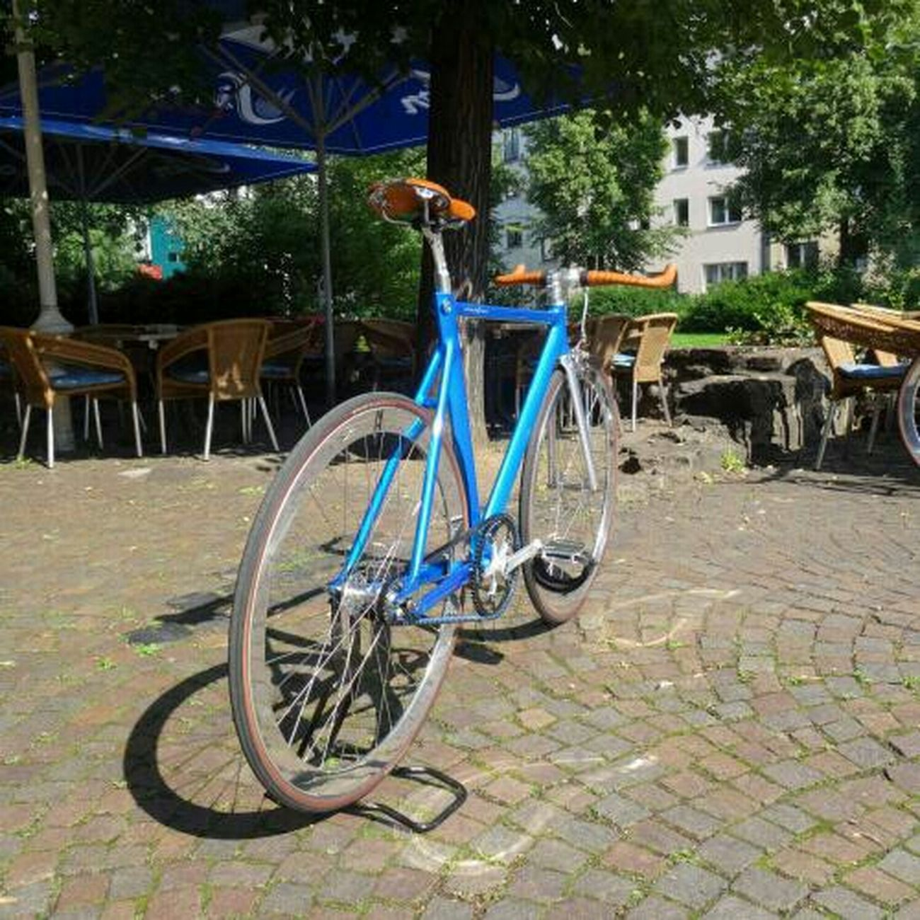 Schindelhauer Bike Fixedgear Hektor Beltdrive