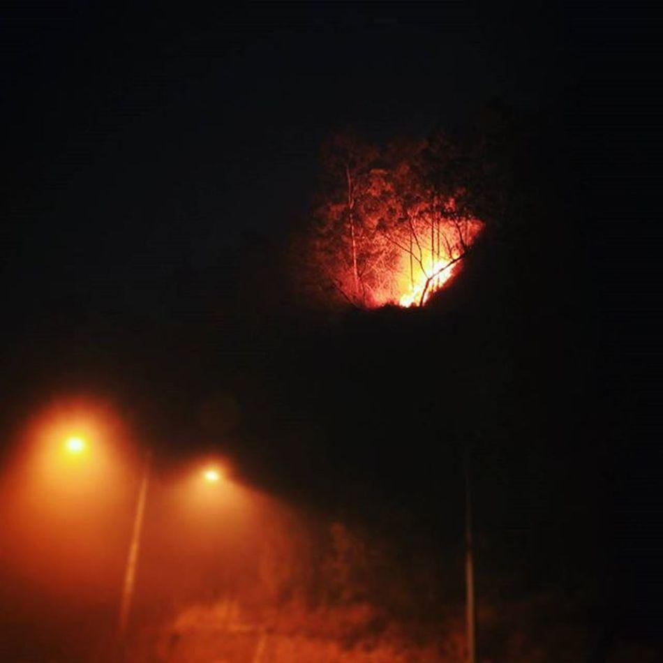Kobaran api merambat hingga tepi jalan di perbatasan Jawa Tengah dengan Jawa Timur pada Senin (26/10) malam. Setidaknya ada 2 unit mobil pemadam kebakaran, 1 unit mobil polisi, dan beberapa warga yang berjaga di sekitar Cemoro Kandang hingga Cemoro Sewu yang tepat berada di kaki Gn. Lawu. PrayforLawu