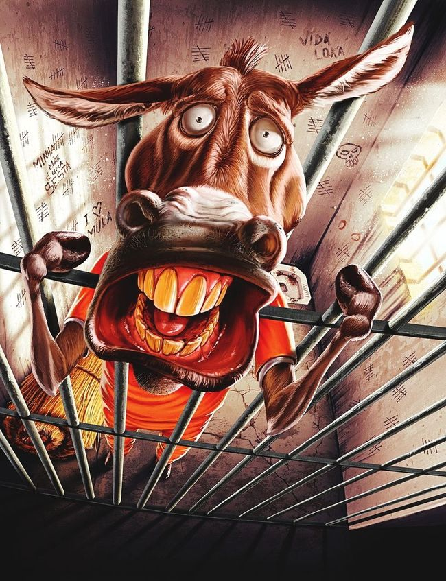 The Flying Donkey on crack ! Any sugguestions? ™® Laughing Out Loud