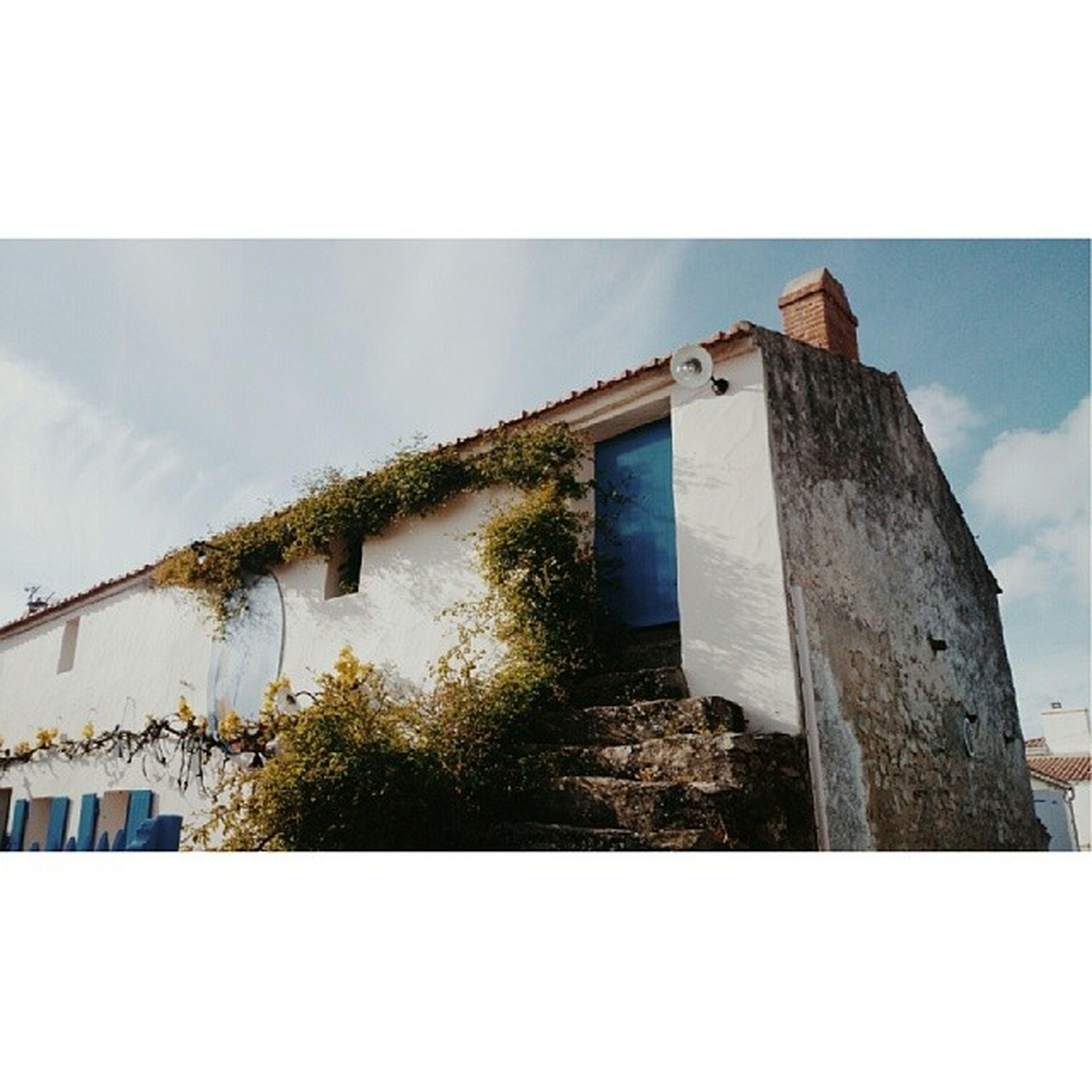 Gustavecaf é Vieil Noirmoutier Avril2014