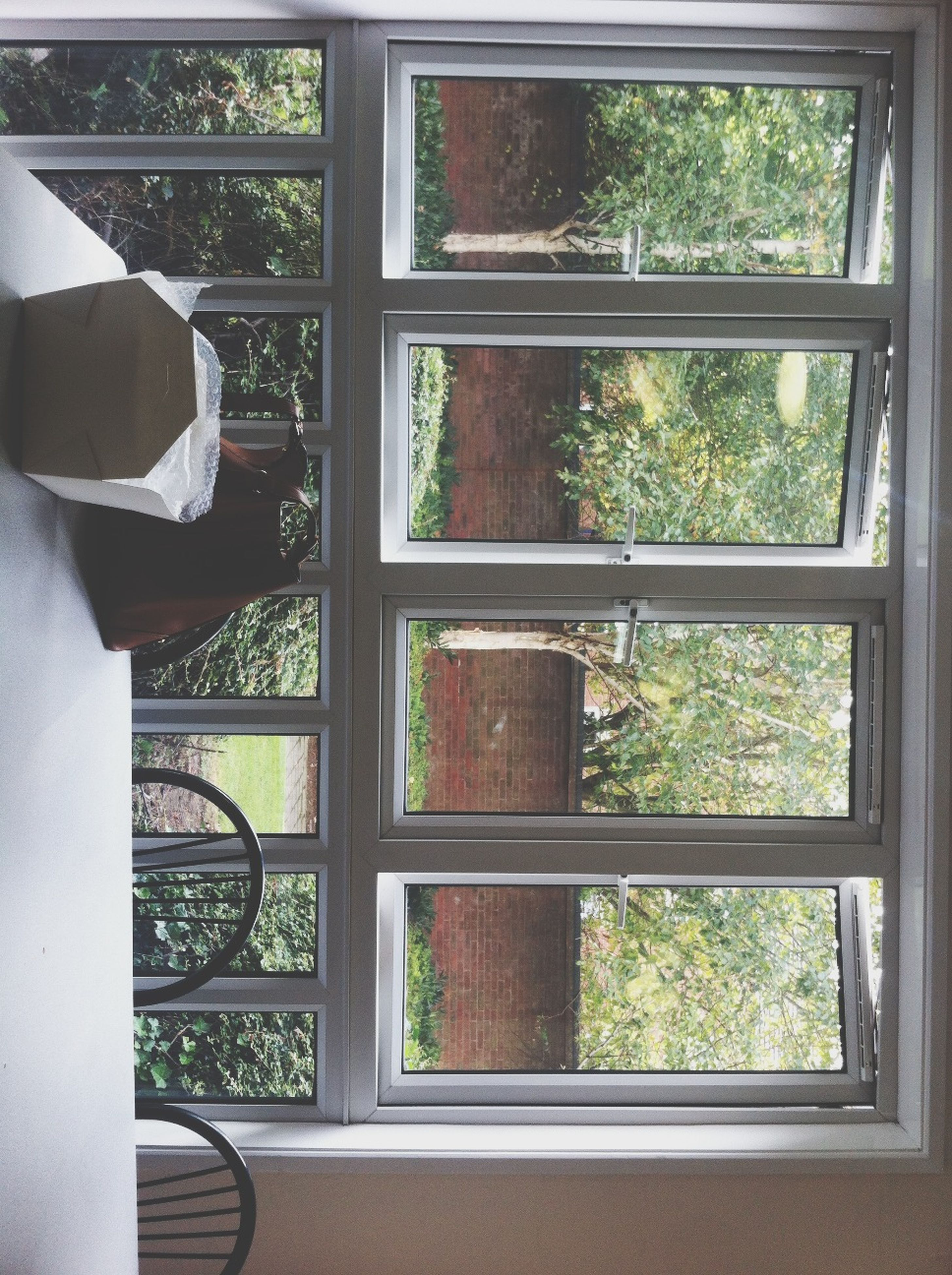 window, indoors, glass - material, transparent, tree, house, home interior, day, sunlight, built structure, open, architecture, plant, closed, growth, glass, curtain, looking through window, window sill, no people