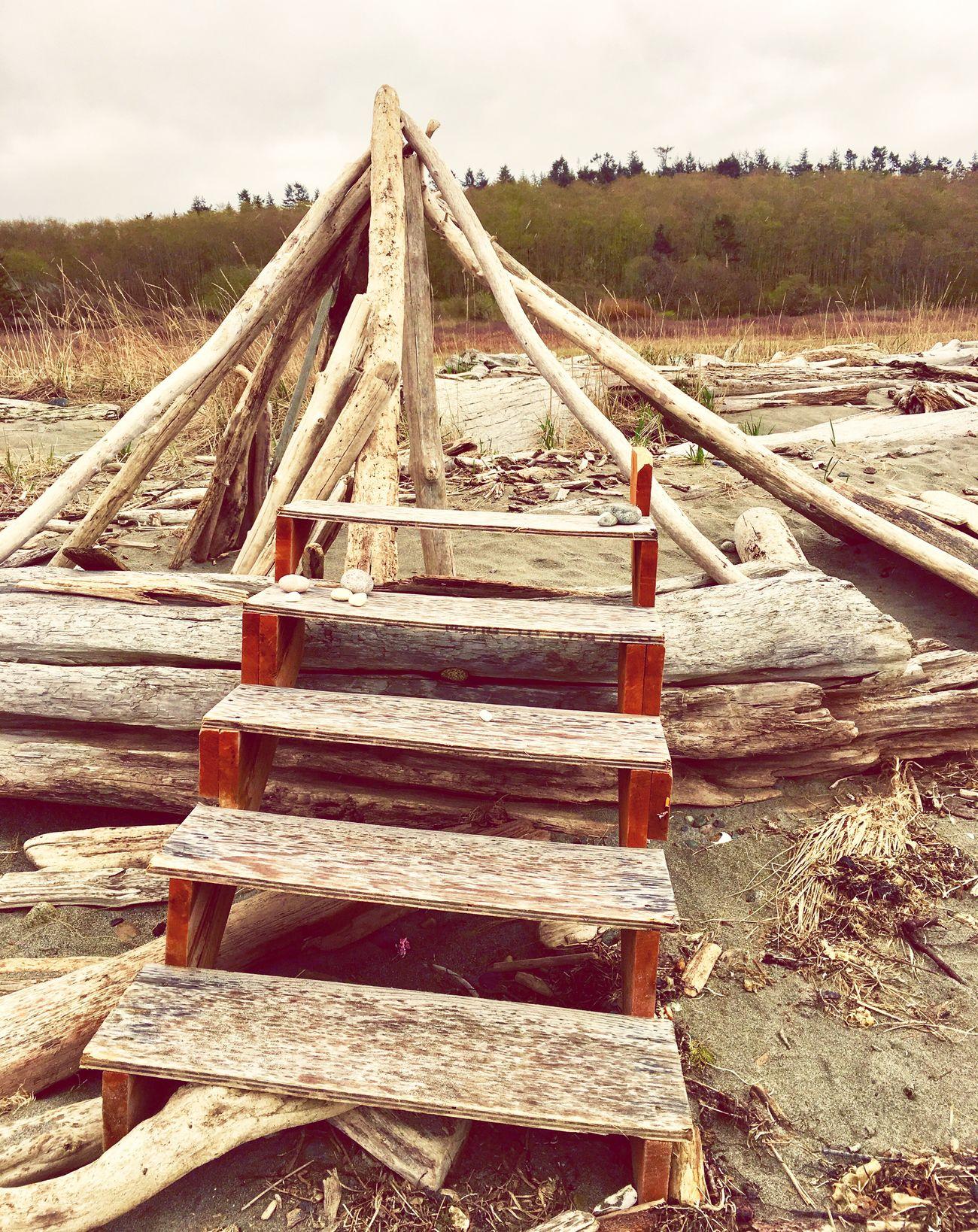 Outdoors Wood - Material Nature Sand Sky No People Day Landscape Driftwood Art Drift Wood  Drift Wood On Beach Beach Art Beach Beach Life Beach Walk Beachwalk