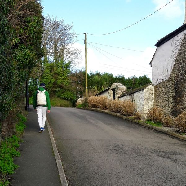 Onthe way back home England 🇬🇧 Countryside Uk St Mawes Nature Green Tree The Way Forward Road Nature