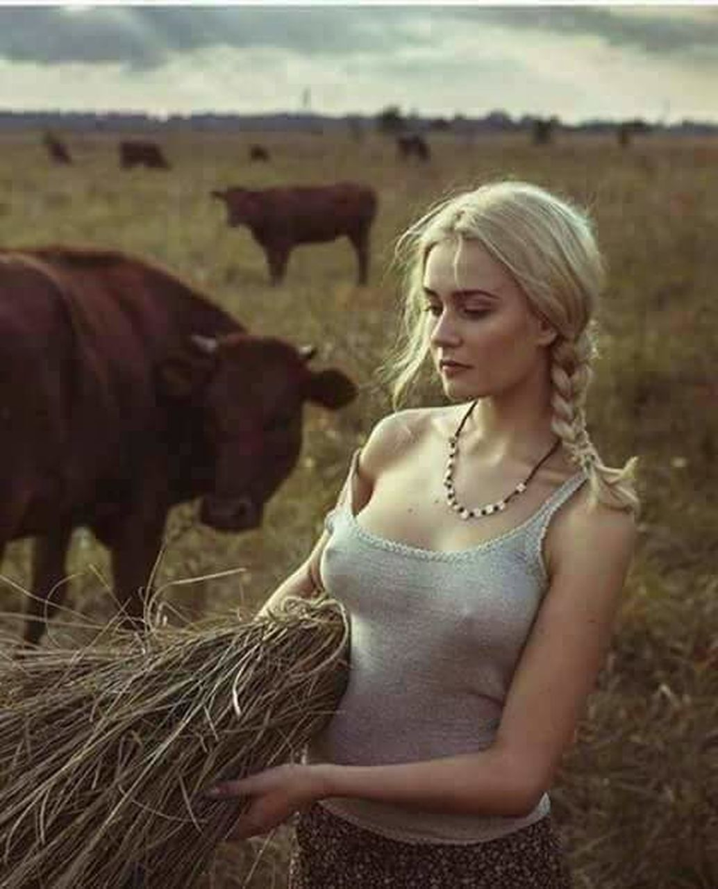 livestock, blond hair, cow, domestic animals, agriculture, field, cattle, hay, one person, rural scene, adult, grass, outdoors, standing, animal themes, young adult, mammal, beauty, people, only women, day, adults only, one young woman only
