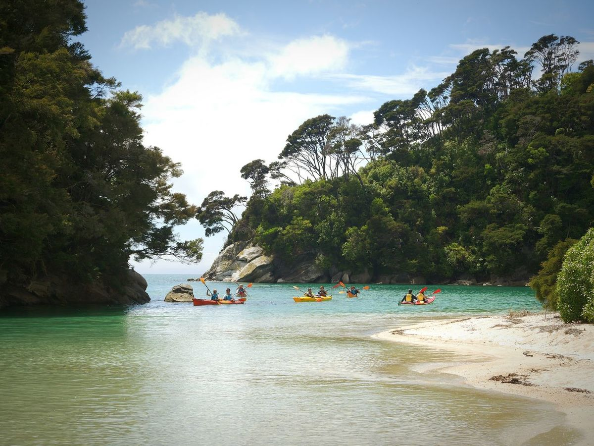 New Zealand Beautiful Travel New Zealand Beauty New Zealand Scenery Neuseeland New Zealand Landscape Landscapes With WhiteWall Blue Water Abel Tasman Nationalpark Abel Tasman Abel Tasman National Park Abel Tasmin National Park Kayak Kayaking Kayaking In Nature