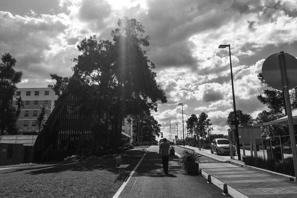 Sky Cloud - Sky Tree Day The Way Forward One Person Road Walking Built Structure Men Monochrome Shadows & Lights