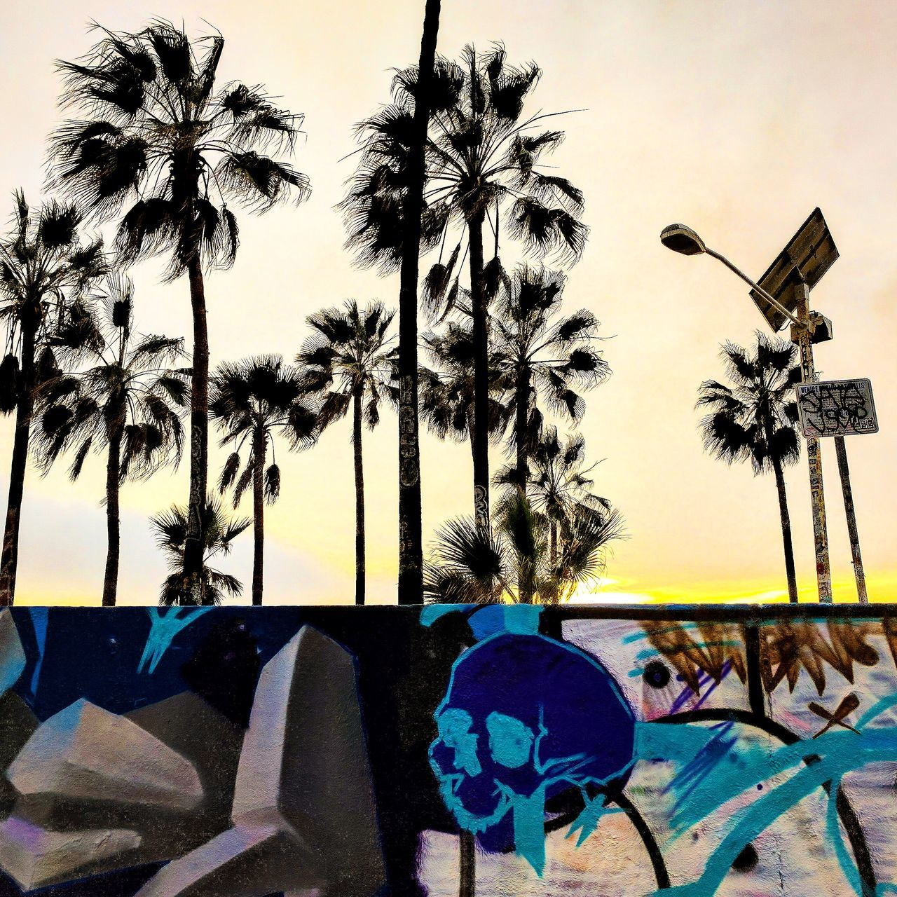 Palm Tree Sky Sunset Beach LiveanddirectfromLosAngeles Skull Graffiti Magichour Venice Beach Lightroom Mobile Shotbypixel No People Multi Colored Tree Outdoors Day Nature