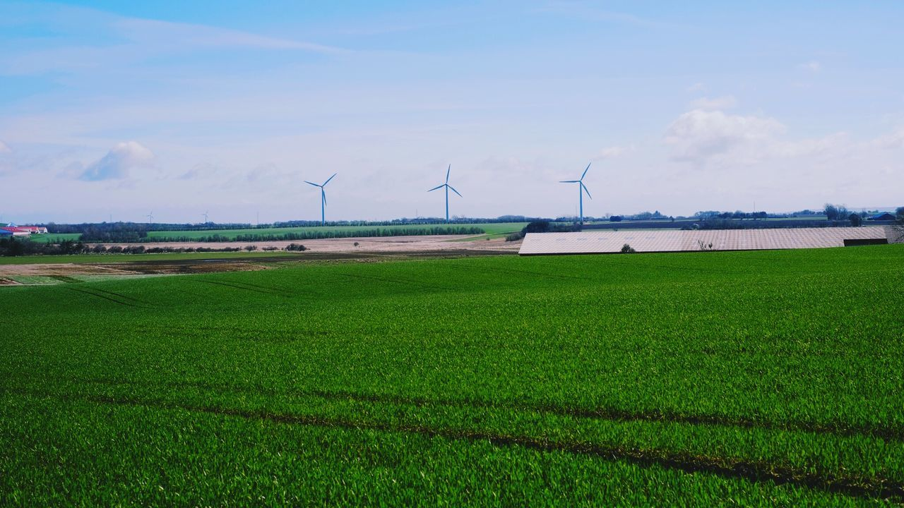 Agriculture Alternative Energy Beauty In Nature Cloud - Sky Day Efficiency Environmental Conservation Field Fuel And Power Generation Grass Growth Industrial Windmill Landscape Nature No People Outdoors Renewable Energy Rural Scene Scenics Sky Traditional Windmill Water Wind Power Wind Turbine Windmill