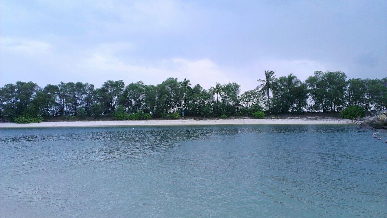 Protecting Where We Play EyeEm Nature Lover Beautiful Nature Beachphotography Beach