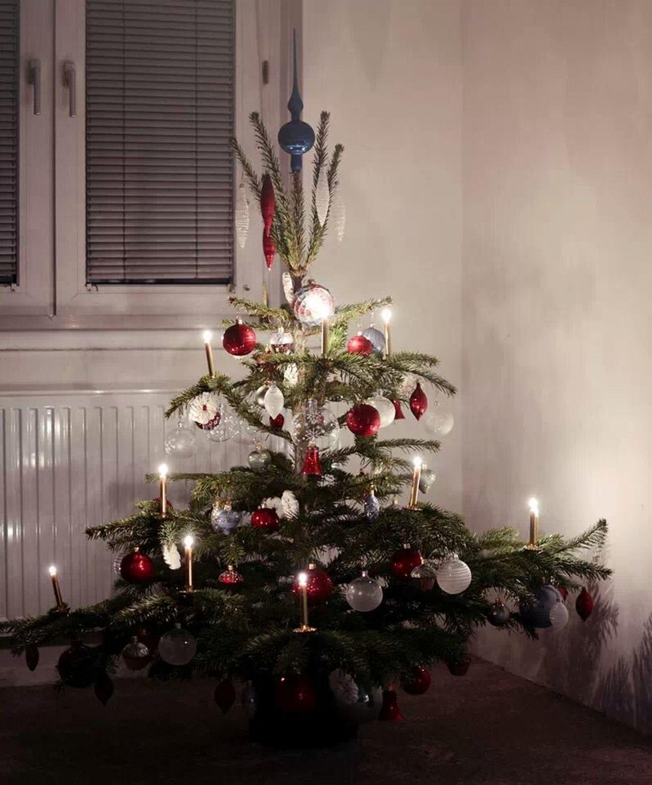 Christmas Tree Christmas Tree Narime