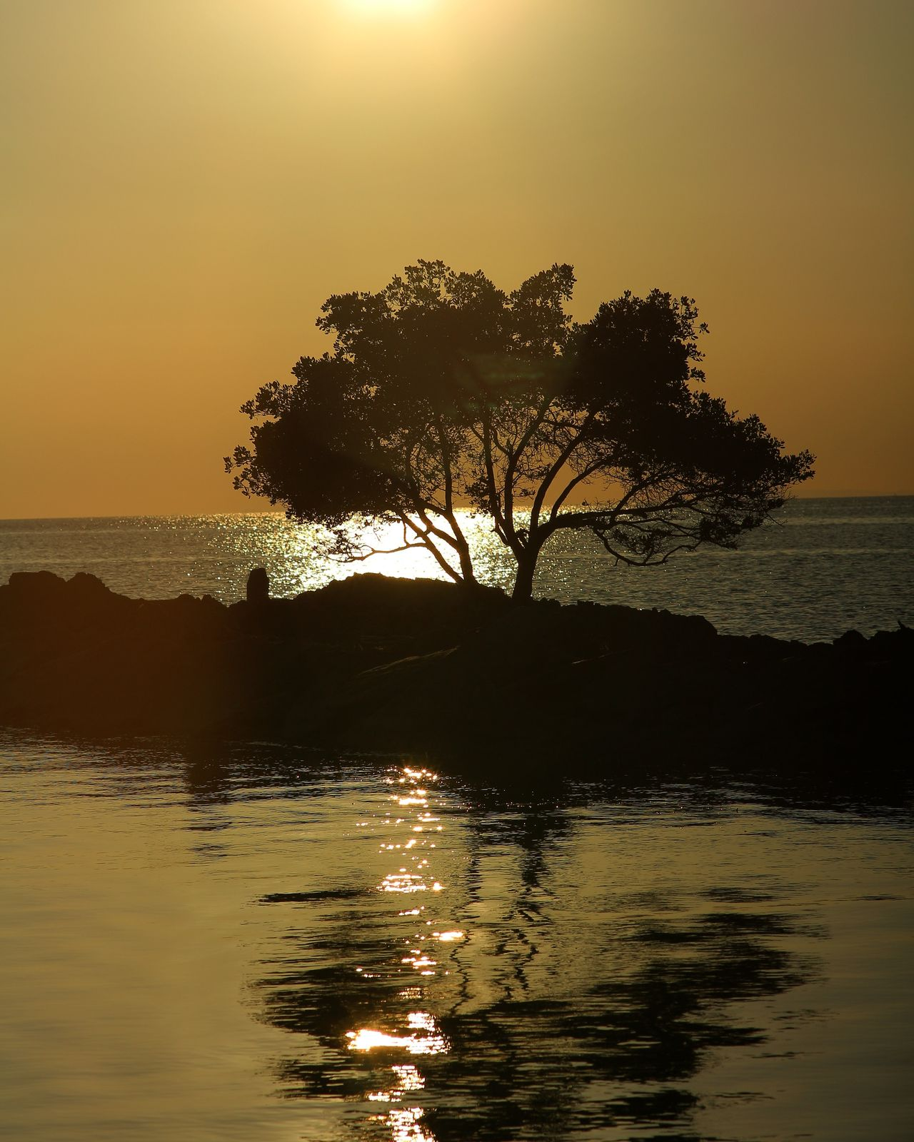 Burot beach in Calatagan, Batangas. Sunset Reflection Water Landscape Tree Silhouette Nature Beauty In Nature Beach Tourism Vacations Beauty In Nature Silhouette Travel Destinations