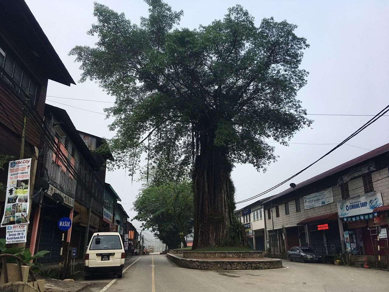 Tree Building Exterior Architecture Street Built Structure City Transportation Sky Outdoors Day Real People Tranquility Leisure Activity Beauty In Nature Pahang, Malaysia Malaysia Sungai Lembing Misty Morning Tree Lifestyles No People (null)Architecture Tourist Wood - Material