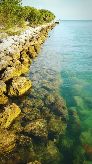 Rocky Beach Bay Sea And Sky Ocean View Oceanside Ocean Photography Seascape Seaside Sea View Miami Key Biscayne Virginia Key Hanging Out Check This Out Taking Photos Enjoying Life Yacht Harbor Beach Hidden Gems