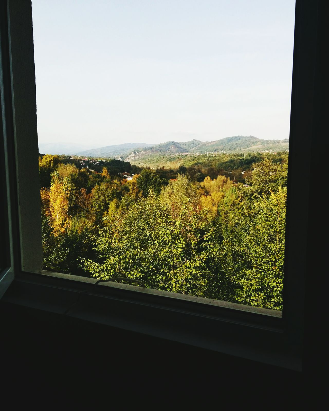Morning view Window Looking Through Window Day Nature Breaza Romanian Lands Energy Indoors  Glass - Material Window Transparent Tree Home Interior Vehicle Interior Looking Through Window Landscape Sky Window Sill Window Frame Day Green Color Branch Field Agriculture Nature First Eyeem Photo