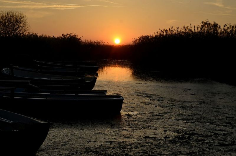 Water Sunset No People Sky Night Outdoors Nautical Vessel Tree Nature Space Astronomy Feeedersee Boats Silluettes And Sky Sillouette Reed