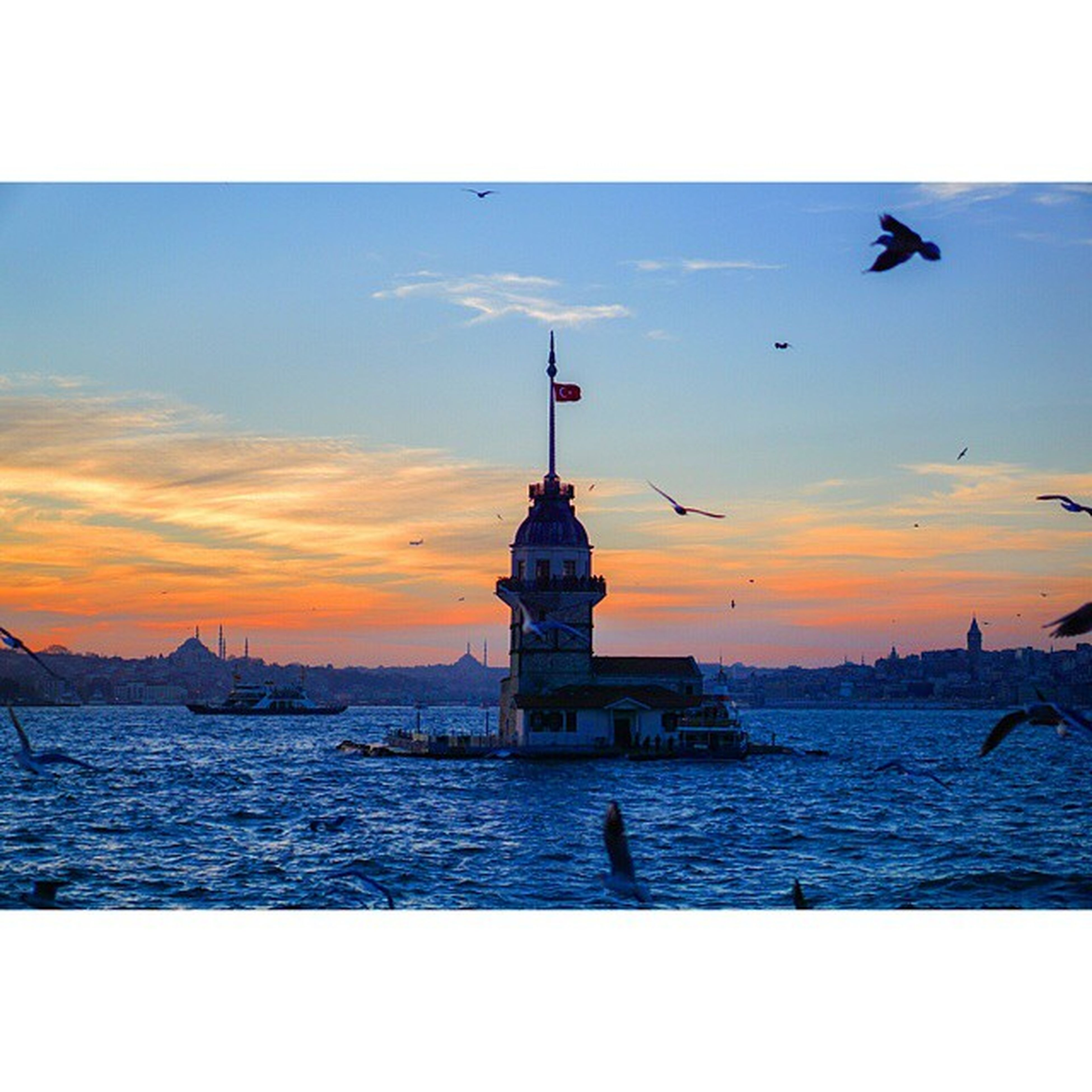sea, water, horizon over water, sunset, sky, bird, scenics, tranquility, beauty in nature, tranquil scene, nature, transfer print, animal themes, lighthouse, auto post production filter, wildlife, silhouette, animals in the wild, built structure, idyllic