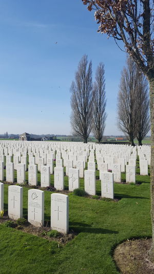 Tombstone Cemetery Grass Memorial Day Outdoors No People Bare Tree Sky Nature Tree Grass Military Belgium In A Row War History Grave The Past Sunlight Built Structure War Memorial