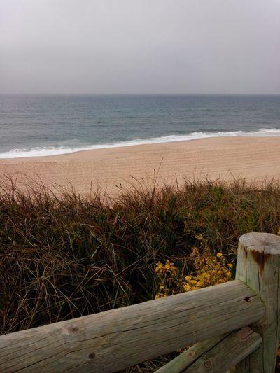 Santacruz SantaCruzBeach Praiadesantacruz Praia Praiadonavio Playa Winterbeach Windowtothebeach Beach Beachphotography