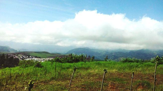 Del paisaje de mi tierra Costa Rica