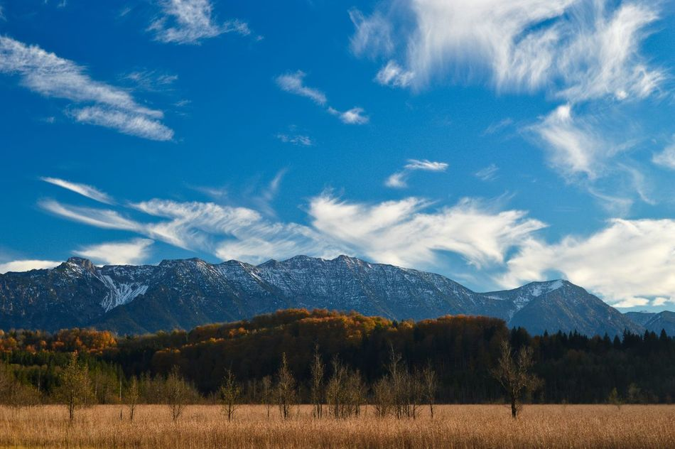 Beautiful stock photos of colorado, Beauty In Nature, Cloud - Sky, Day, Field