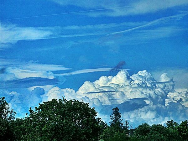 Different Types Of Clouds Blue Sky And Blue Clouds over Green Trees And Leaves Landscape_photography Cloudscape Hello World Tadaa Community Beliebte Fotos No People Outdoors Langenselbold Germany🇩🇪