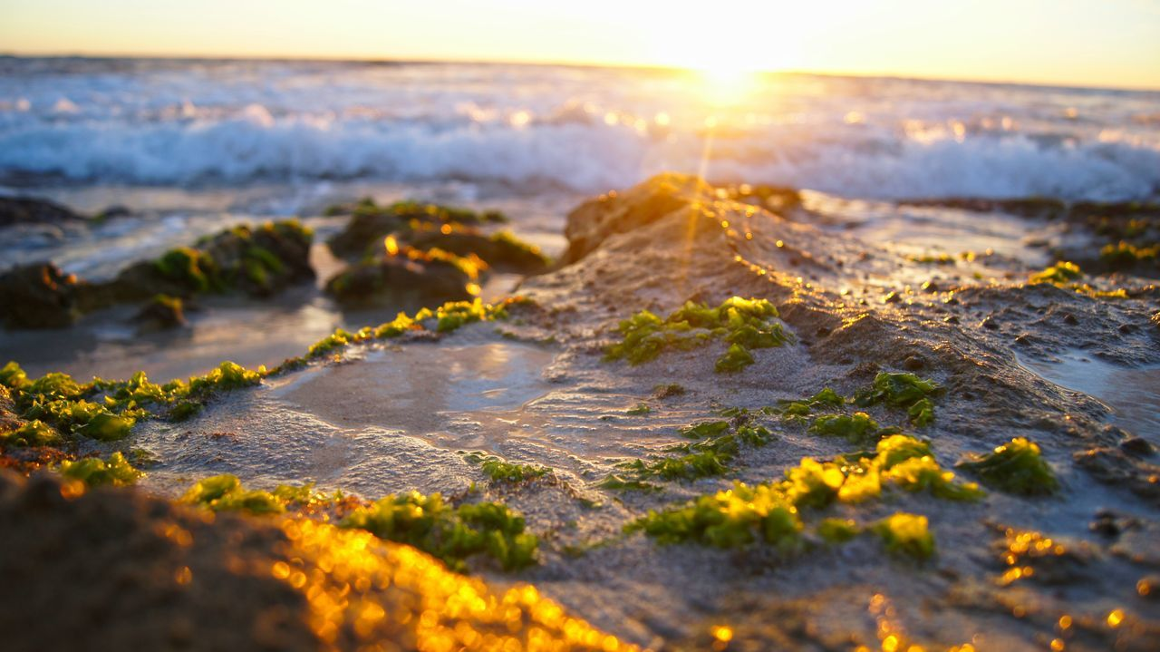 Rocks Seaside Sunset Beach Fireysky Waves Australia Summer Ocean Splash Nature_collection Nature Photography Sunset_collection Burns Beach Beach Lover Beach Photography Western Australia WA Perth Showcase: February The KIOMI Collection Colour Of Life