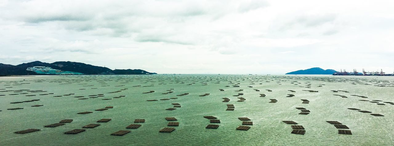 Rafts drifting Landscape Landscape_photography Landscape_Collection Panoramic Panoramic Photography Ocean View Raft Drifting Island Port Sea And Sky Clouds And Sky Eye4photography  Water Reflections Outdoor Photography Outdoors Depth Of Field Infinity ∞ Calm Calm Water