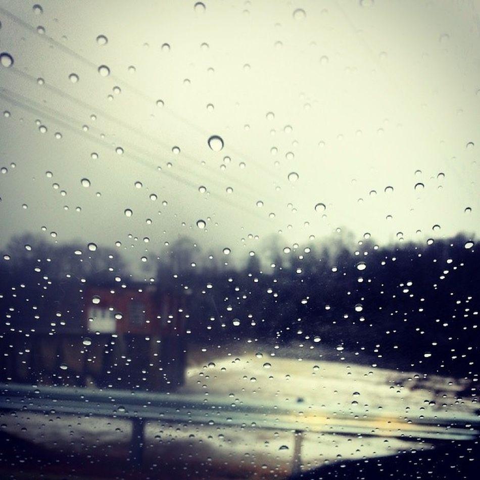 DuckRiver Rainy Day Thinkinspot Columbiatn