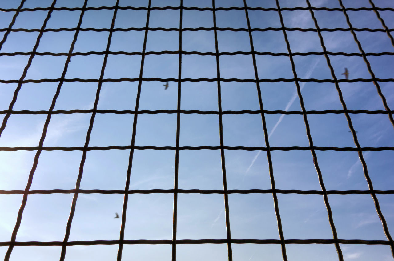 Under the heaven. Backgrounds Bars Captive Birds Full Frame Grating Grid Grid Pattern Grille Lattice Low Angle View Mottled Sky No People Outdoors Pattern Sky Squares Swallows Top View Under The Heaven The Great Outdoors - 2017 EyeEm Awards EyeEmNewHere