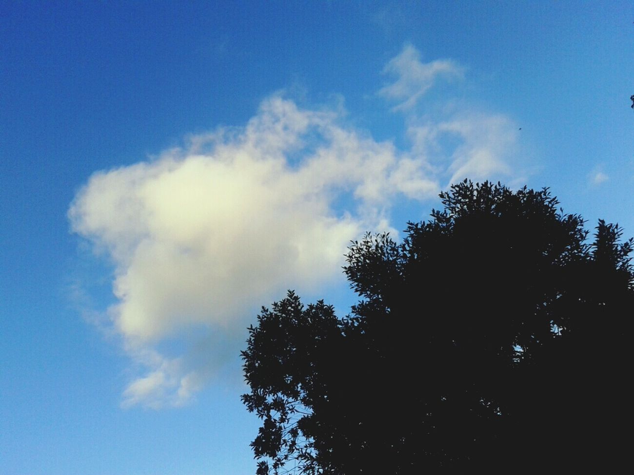Skyperfect Clouds And Sky Skylovers Cloud_collection