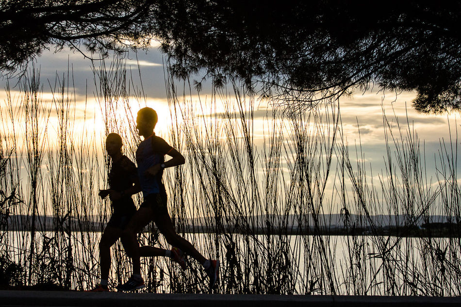 Beautiful stock photos of running, Beauty In Nature, Calm, Cloud, Dawn