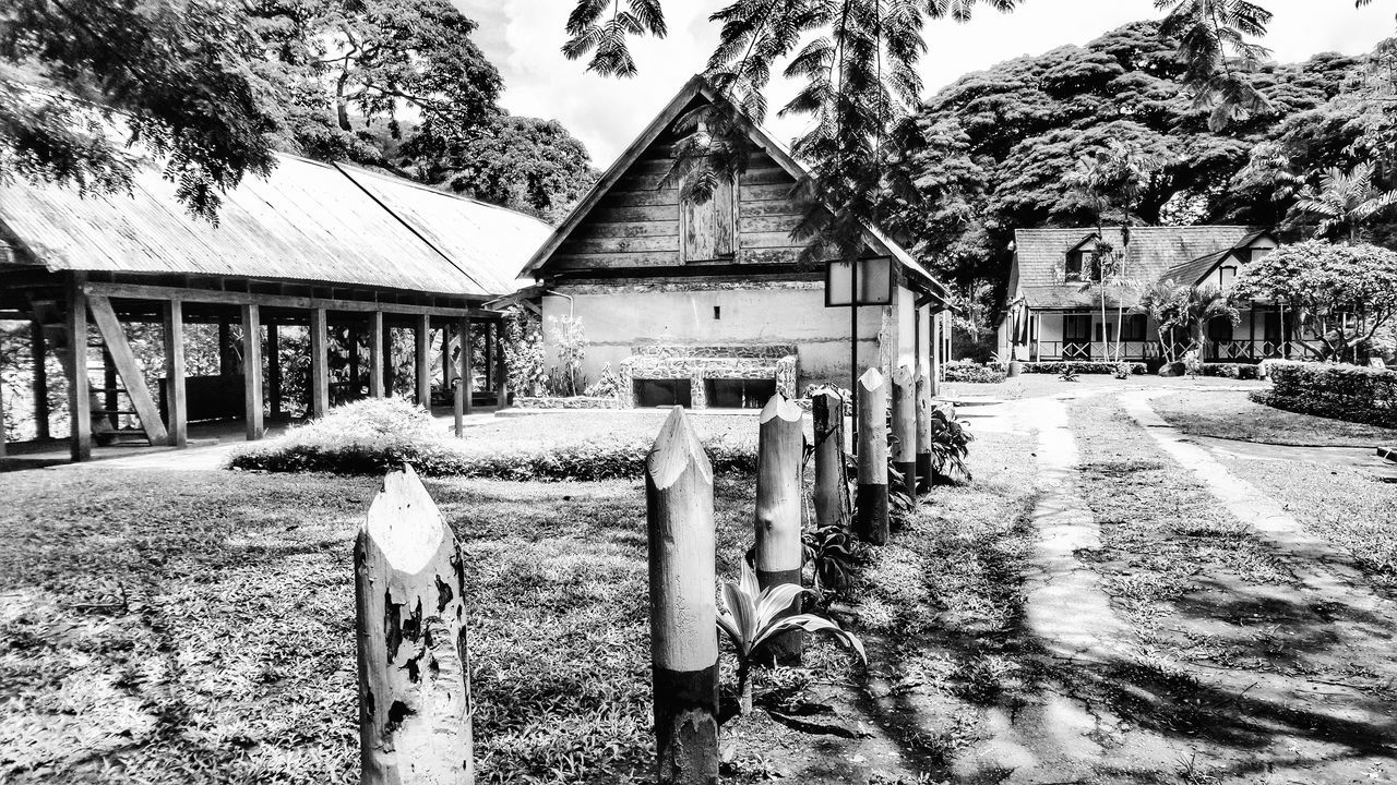 Trinidad And Tobago Lopinot Historical Site Samsung Kzoom Black And White Photography Shadows & Lights Beautiful Taking Photos Trees Enjoying The Sights Being Creative Playing With Filters Fun With Filters