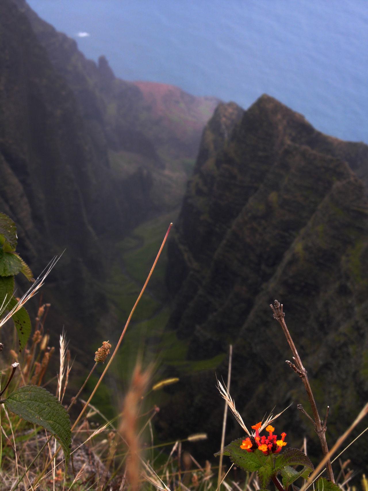 Awaawapuhi Trail Na Pali Coast Kauai Hawaii
