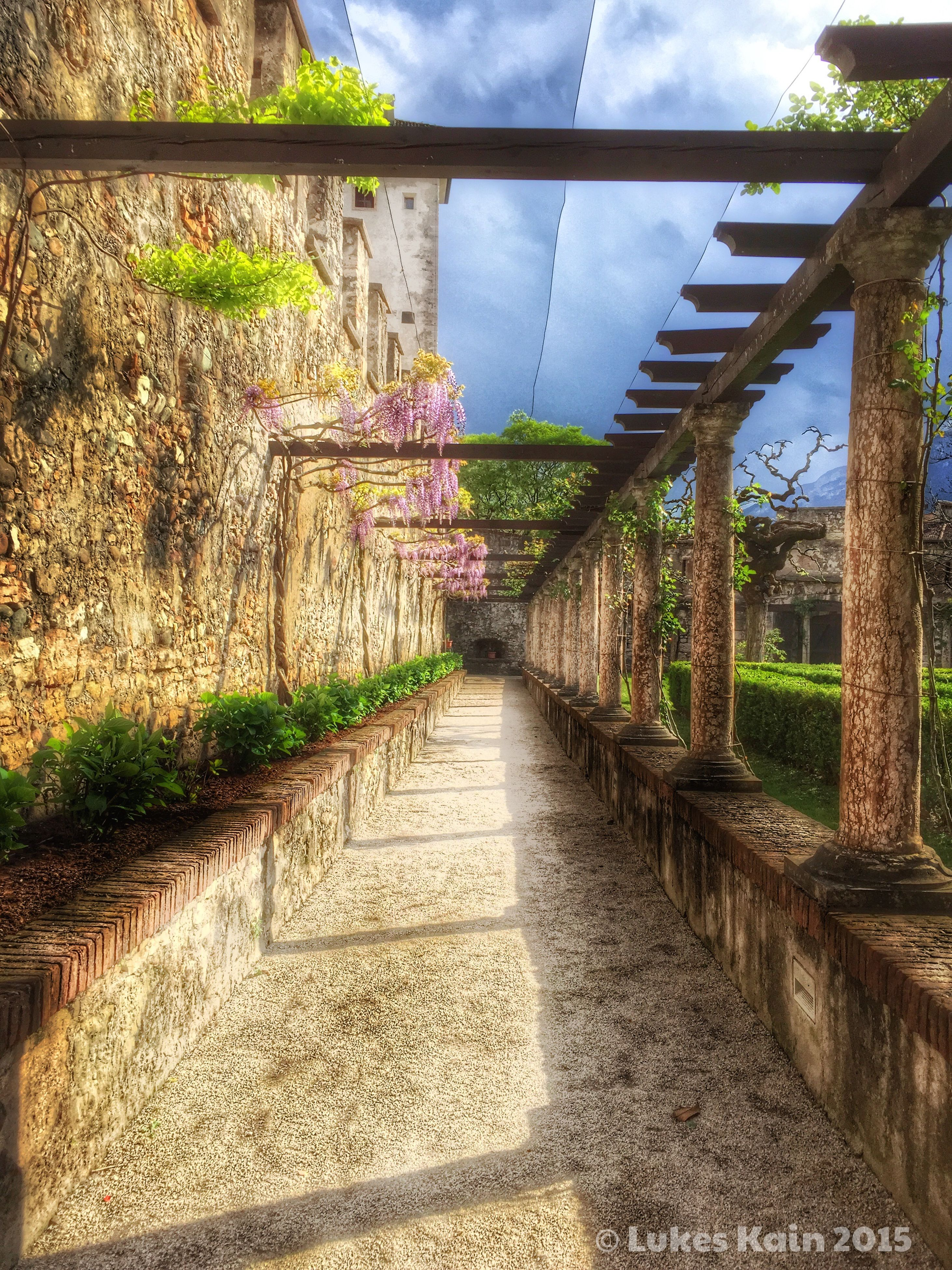 architecture, built structure, the way forward, diminishing perspective, sky, stone wall, plant, building exterior, connection, narrow, walkway, vanishing point, day, wall - building feature, arch, leading, no people, footpath, growth, tree