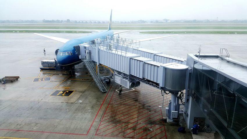 Vietnam Airline