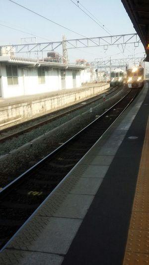 何というか……長閑です。 Public Transportation EyeEm Japan Railway ここもICカードが使えない。仙台のときと同じくハマるとこだった!