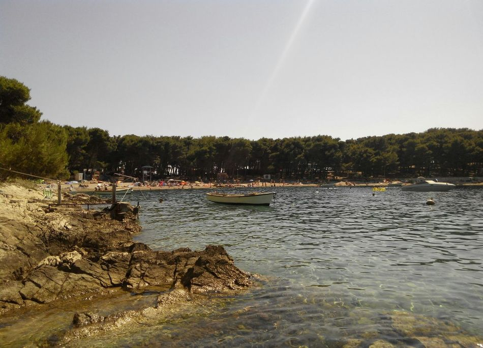 Beauty In Nature Boat Day Landscape Nature No People Outdoors Sky Tree Water Pine Beach Pine Beach Croatia Pine Pine Trees Pine Trees By The Beach