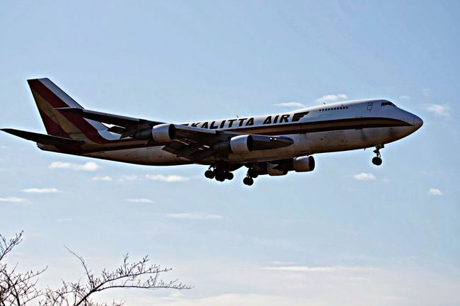 Kalitta Air B747-222 何これー⁉︎ 初めて見る航空会社!成田に下りて来たナゾのヒト…^^; Airport Airplane NARITAAIRPORT Narita B747