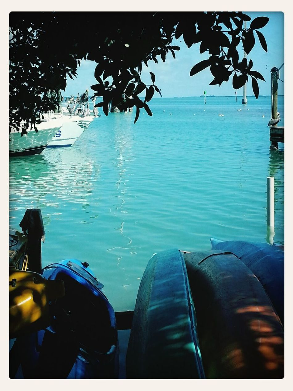 view from work. Robbies Marina Happy Cat Snorkel Boat Islamorada Florida Keys