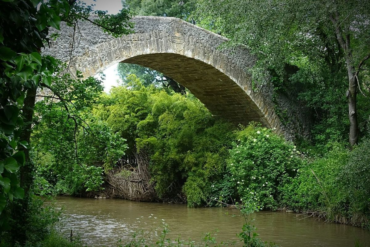 Outdoors Built Structure Beauty In Nature Arch ARCHE Tree Tranquility Bridge Pont Grass River Nature Green Color Plant Rivières Architecture Water Riviere