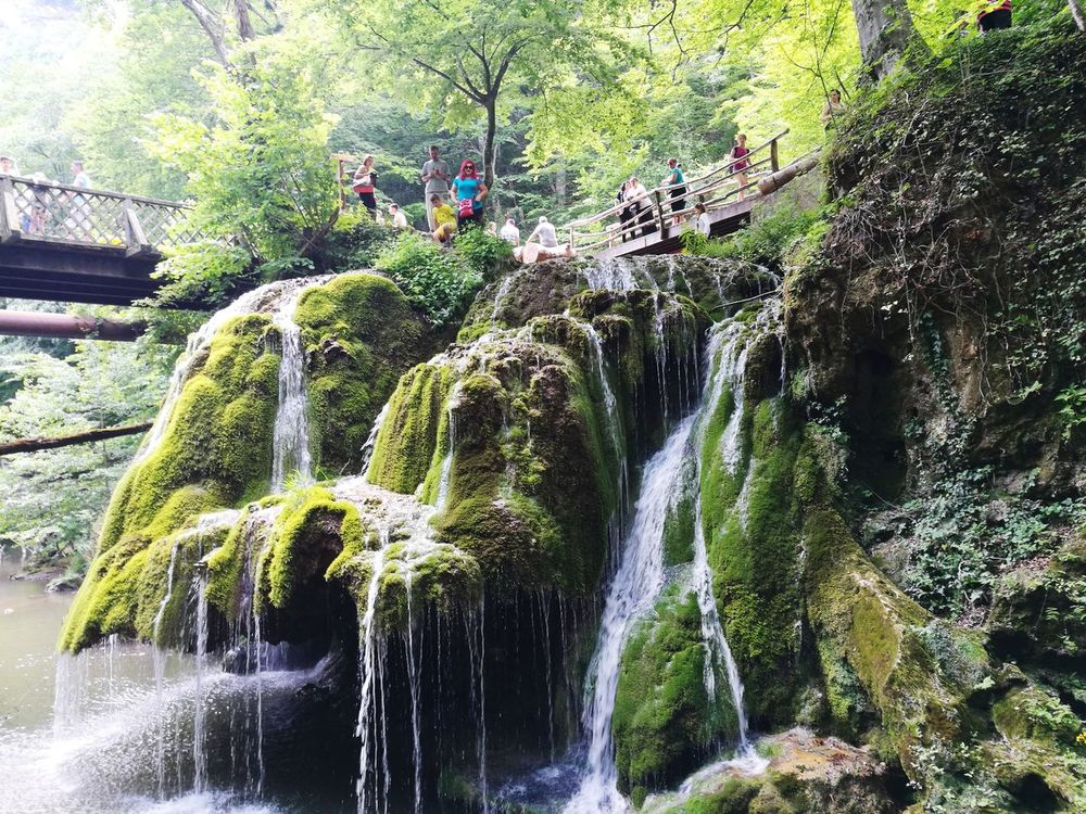 Nature Day Waterfall Beauty In Nature Freshness Green Color Romania Bigar Waterfall